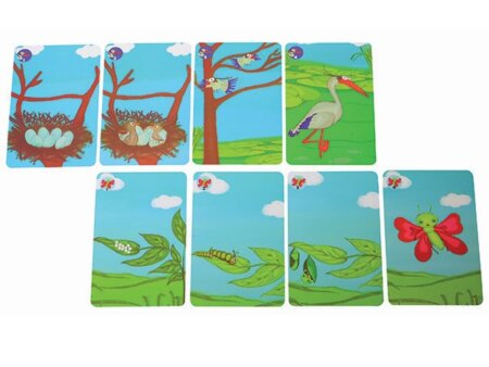 stepping-stones-cards-600